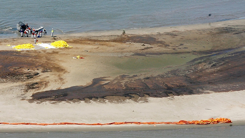 Workers clean up oil on a small island near South Pass, La., on Saturday, May 22, 2010, near the mouth of the Mississippi River as oil continues to hit land. (AP  /The Times-Picayune, Rusty Costanza)