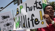Gwen Ward joins other demonstrators outside a BP station in Pensacola, Fla., Sunday, June 6, 2010. Oil from the Deepwater Horizon disaster has started washing ashore on the Alabama and Florida coast beaches. (AP Photo/Dave Martin)