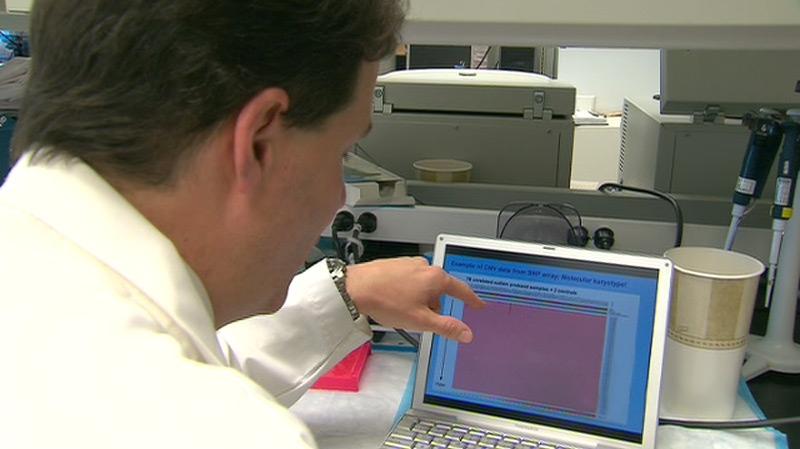 The Hospital for Sick Children's Dr. Stephen Scherer looks at genetic data in Toronto, Thursday, June 9, 2010.