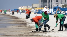 Oil cleanup workers hired by BP make an effort to clean the shore in Orange Beach, Ala., Saturday, June 12, 2010. (AP / Dave Martin)