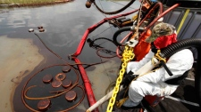 A cleanup worker vacuums oil from the Deepwater Horizon oil spill along the Northern shores of Barataria Bay in Plaquemines Parish, La., Tuesday, June 15, 2010. (AP Photo/Gerald Herbert)