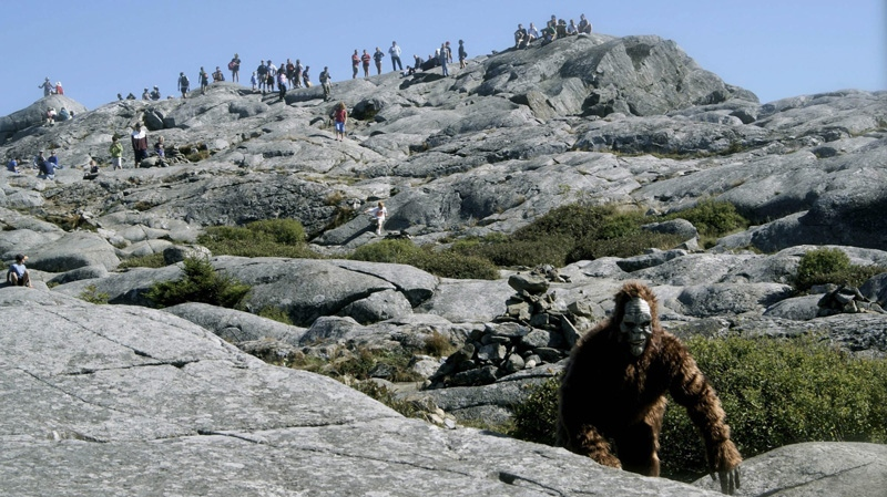 Jonathan Doyle wears a Bigfoot costume in Jaffrey, N.H., Sept. 6, 2009. (NYCreator.com)