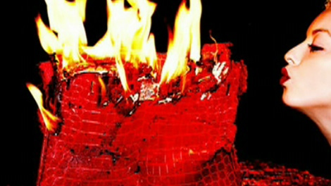 Francesca Eastwood sparks public outrage for burning a $100K Birkin bag and calling it art.