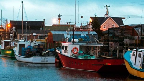 Nova scotia lobster fishermen buoyed by big catches ctv news for Nova scotia fishing