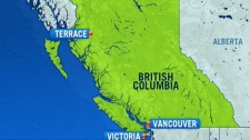 Three people have been killed in a helicopter crash that was on a training flight near Terrace, B.C.