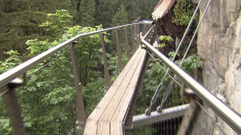 Police have identified the man who died after falling 60 metres at the Capilano Suspension Bridge in North Vancouver on June 2, 2012. (CTV)