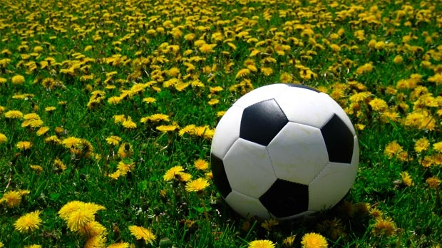 A soccer ball sits in a field, surrounded by dandelions.