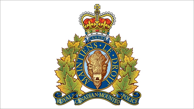 RCMP are investigating after two transport truck collided in Alberta, killing a Winnipeg man.