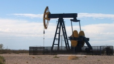Oil Pump