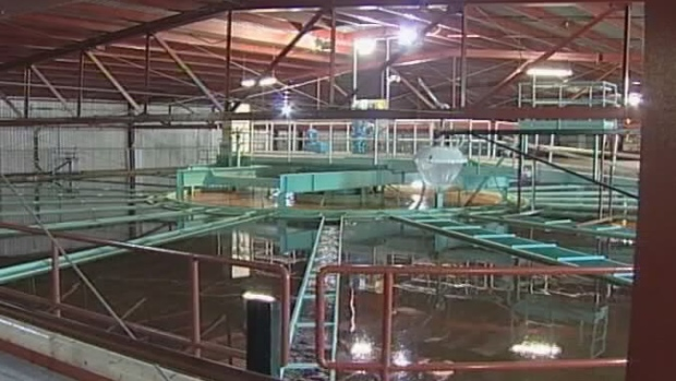 Prince Albert's water treatment plant