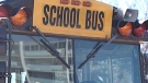 School bus generic