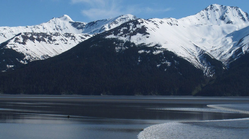 Alaska man discovers message in bottle from Russian Navy
