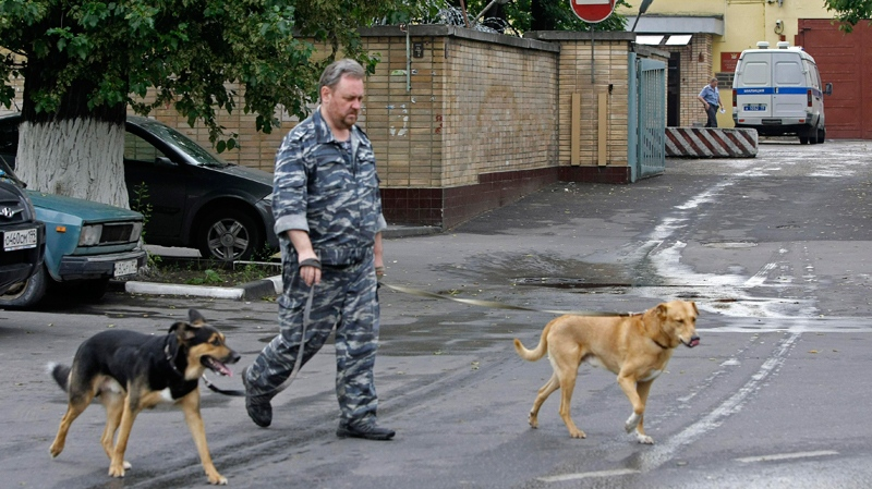 A guard with two sniffing dogs patrol the perimeter of the Lefortovo prison in Moscow, Thursday, July 8, 2010. (AP /Misha Japaridze)
