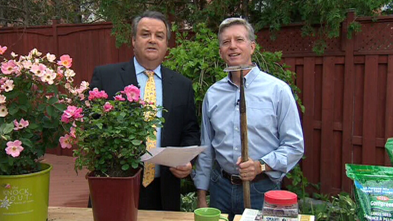 Mark Cullen answers viewers' questions on Canada AM, Wednesday, June 27, 2012.