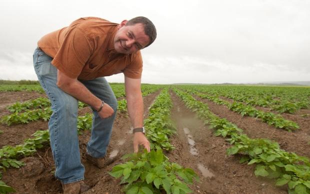 New Brunswick potato farmer Henk Tepper
