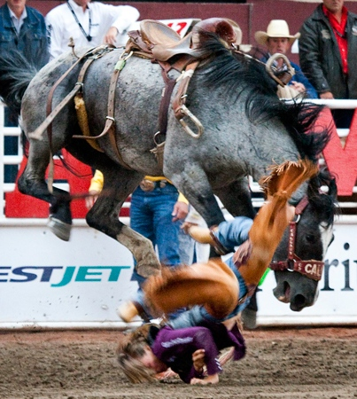 Brittany Mercier of Airdrie, Alta.,gets bucked off her horse during novice bareback rodeo action at the Calgary Stampede in Calgary, Monday, July 12, 2010. (Jeff McIntosh / THE CANADIAN PRESS)