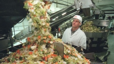 Fresh Express CEO Steve Taylor looks over a salad packaging machine at the Fresh Express packaging plant in Salinas, Calif., Monday, Jan. 31, 1999. Fresh Express is a major producer of pre-packaged salads. (AP Photo/John Todd)