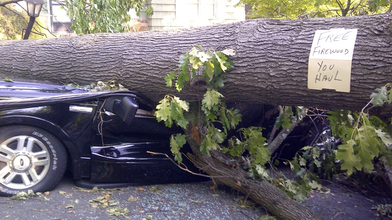 A tree sitting atop a vehicle offers free firewood in Falls Church, Va., Monday, July, 2, 2012. (AP / Matthew Barakat)
