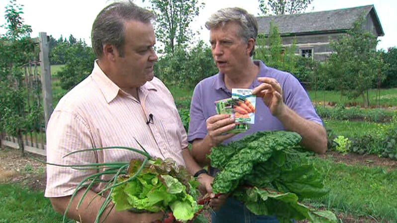 Mark Cullen offers Canada AM advice on how to grow your own vegetables, Wednesday, July 4, 2012.