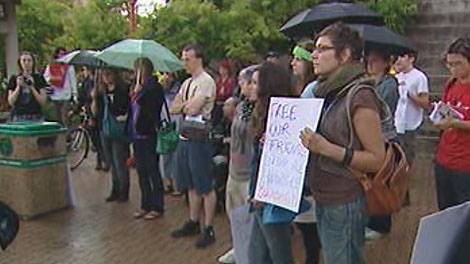 Dozens of people attended a rally in Winnipeg calling for an inquiry into police action at the Toronto G20.