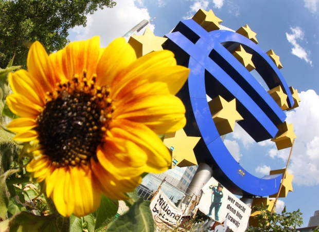 A sunflower stands in front of the Euro sculpture in Frankfurt, Germany