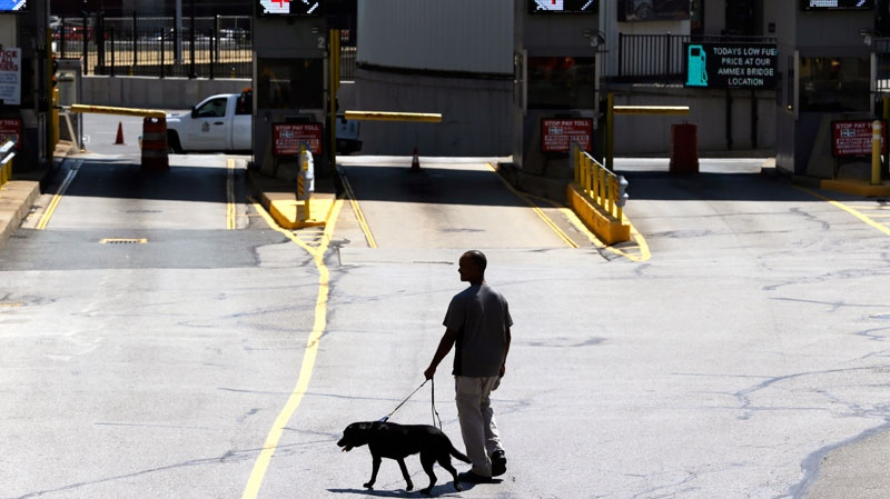 A dog is used by authorities to investigate a bomb threat at the Detroit-Windsor Tunnel, Thursday, July 12, 2012. (AP / Paul Sancya)