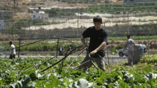 Contractors working for the Israeli military remove water pipes from Palestinian farm land near the West Bank city of Hebron, Monday, July 19, 2010. (AP Photo/Nasser Shiyoukhi)