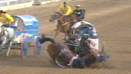 Crash Kills Chuckwagon Horses At Calgary Stampede Ctv News