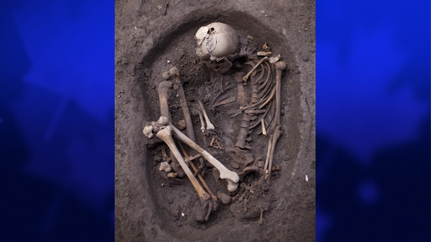 An unearthed skeleton dating back about 700 years is seen at a recently discovered archeological site in Mexico City, Friday, July 13, 2012. (AP Photo/Alexandre Meneghini)