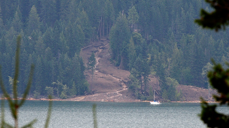 The swath of a landslide that buried three homes and has left four people unaccounted for in Johnsons Landing, B.C., is seen from across Kootenay Lake on Saturday, July 14, 2012. (Jeff McIntosh / THE CANADIAN PRESS)