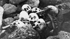 Skulls of members of the Franklin Expedition, discovered and buried by William Skinner and Paddy Gibson in 1945, at King William Island, N.W.T. (now Nunavut), are shown in this photo from the National Archives of Canada Collections. (National Archives of Canada / THE CANADIAN PRESS)
