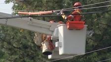 Hydro line repairs