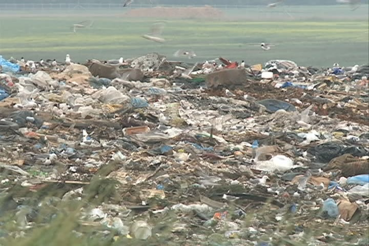 At the Saskatoon Landfill, the city's trash is being transformed into treasure.