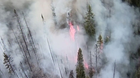 Several fires are raging outside of Kamloops, B.C. July 29, 2010. (CTV)