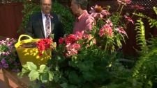 Mark Cullen shows Canada AM how to care for plants during a heat wave