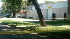 Police investigate a murder Sunday afternoon in the 500 block of Furby Street.