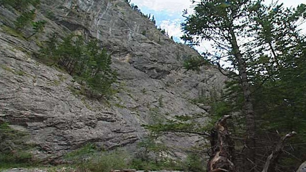 A man and woman were killed after they fell while climbing the Heart Creek Trail.