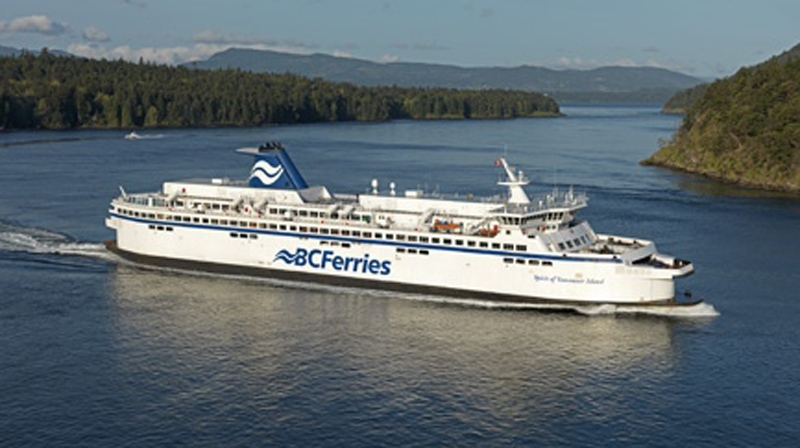 Ferry delayed due to swimming black bear at Departure Bay