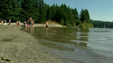 Swimmers enter Westwood Lake, near Nanaimo, shortly after a seven-year-old girl drowned. Aug. 13, 2010. (CTV)