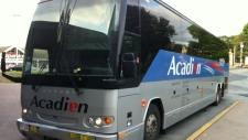 Acadian Lines