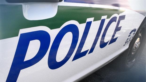 Dog siezed in Gatineau assault case