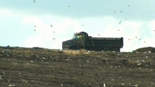 Winnipeg police are preparing to search a massive landfill for the remains of a woman