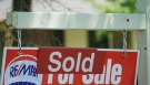 Growing proportion planning to buy homes are first-timers: RBC