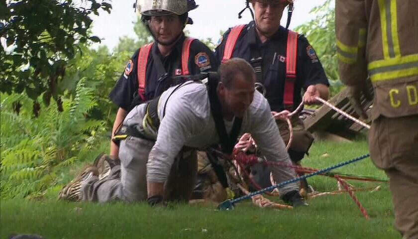 Dog Rescue Ontario Ca