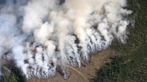 A fire burns near Meldrum Creek in B.C.'s Cariboo region. Aug. 15, 2010. (Ron Ewanyshyn)