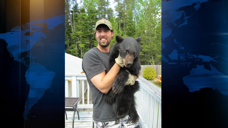 In spring 2012, Ryan Neal of Terrace, B.C. snapped photos of himself with a sickly bear cub before driving the animal two hours to a wildlife rehabilitation centre.