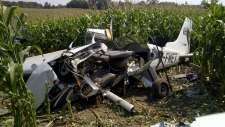 Debris from a plane crash sits in a field in Moorefield, Ont.