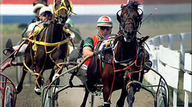 Ontario's Auditor General will review the Liberals' plan to remove slot machines from the province's racetracks after a motion was passed Thursday, Aug. 30, 2012.