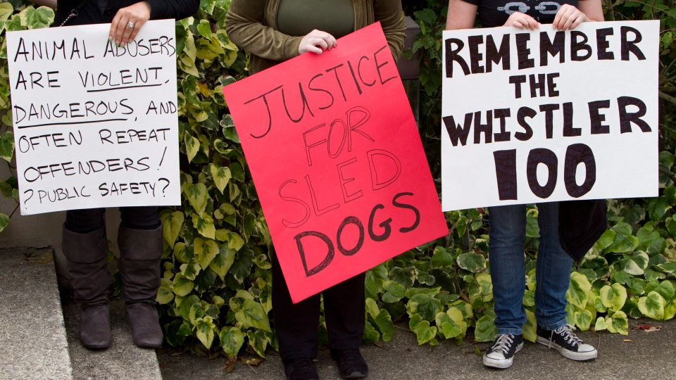 Protesters stand outside provincial court in North Vancouver, B.C. Tuesday, June 19, 2012, waiting for a hearing in the sled dog slaughter case. (Jonathan Hayward/THE CANADIAN PRESS)
