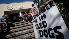 Demonstrators protest outside provincial court during an appearance by accused sled dog killer